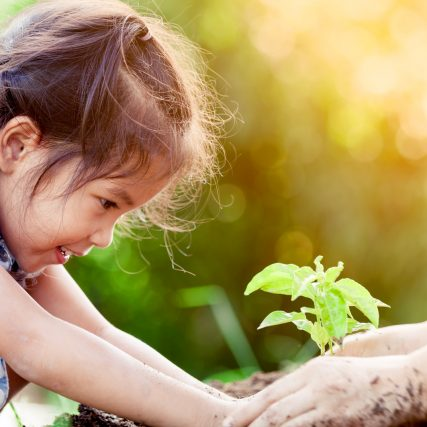 Asian little girl and parent planting young tree on black soil together as save world concept in vintage color tone